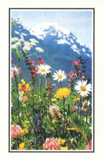Blumenw